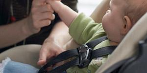 ¿Conoces la nueva norma para mantenerlos seguros en un vehículo?